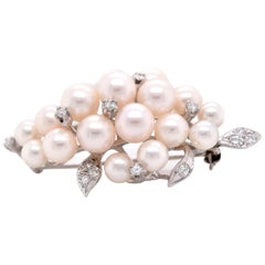 14 Karat White Gold Diamond and Cluster Pearl Brooch