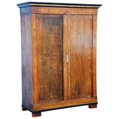 19th Century Bohemian Biedermeier Walnut Wardrobe Cabinet, Restored, 1830s