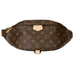 2019 Louis Vuitton Brown Monogram Coated Canvas Bum Bag