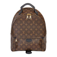 2020 Louis Vuitton Brown Monogram Coated Canvas Palm Springs Backpack MM