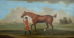 Mol-Ro, a chestnut racehorse, led by a liveried groom