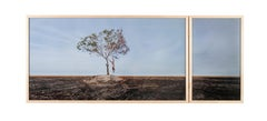 'Temporary Monument #4: O Enforcado' -  landscape, palm tree, human figure
