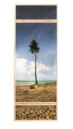 'Temporary Monument #1: Coqueiro' - landscape, palm tree, human figure