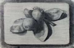 """""""Still Life with Fruit"""" original charcoal drawing by Sylvia Spicuzza"""