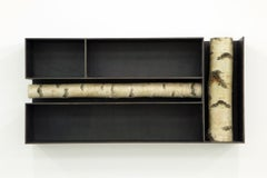 Andrea Branzi, Tree 3, Cabinet, Bookshelf, Birch Wood, Patinated Aluminum, 2010