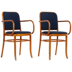 Set of Five Bentwood Dining Chairs Josef Hoffmann Style