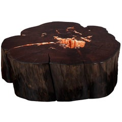 """""""Treasures of Decay""""; A Limited Edition of Sculptural Tables by Studio Roeper"""