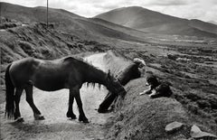 Munster, County Kerry, Ireland