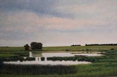 Pond Near St. Cloud, MN, Serene Pastoral Landscape with Meandering Water, Framed