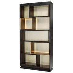 Bookshelf Structure Plywood Ebony Veneered Back in Vetrite with Strip Led