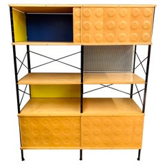 Charles and Ray Eames ESU Storage Unit Shelving Library Étagère Room Divider