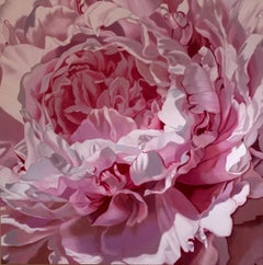 Shanti (pink flower painting, oil on canvas, realism, floral, petals, close up)