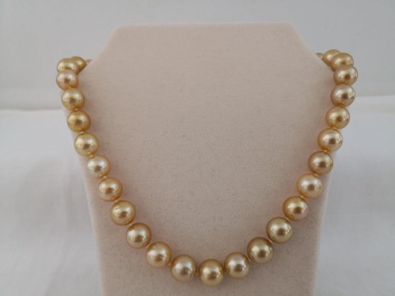 A Natural Color South Sea Pearls, from Indonesia ocean waters. A Deep Golden Color Pearls necklace, This color is rare and unique and is considered the most expensive one among South Sea Pearl. This color is also known as