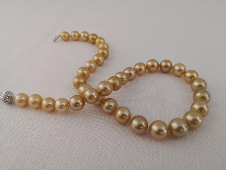 Contemporary Deep Golden Natural Color South Sea Pearls, Round, 18 Karat Gold For Sale