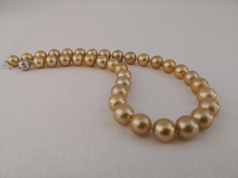 Deep Golden Natural Color South Sea Pearls, Round, 18 Karat Gold In New Condition For Sale In Cordoba, ES