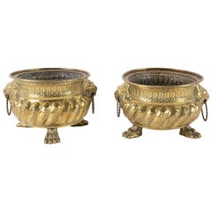 Dutch Brass Cachepots with Lion Head Handles and Paw Feet, a Pair