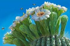 """Beeline"" Saguaro Bloom & Sky  Salt River, Arizona"