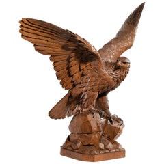 Fine 'Black Forest' Walnut Eagle