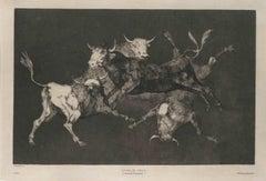 Lluvia De Toros - Original Etching by F. Goya - 1815/19