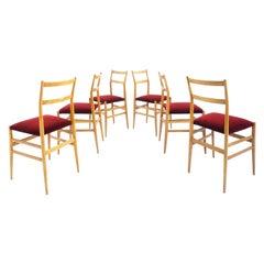 Gio Ponti 6 Leggera Chairs by Cassina Italian Design, 1955