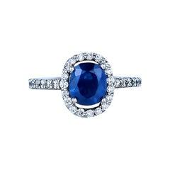 Halo, 2.85 Carat, Sapphire and Diamond Ring, Top Quality 14 Karat