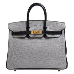 Hermes NEW Birkin 25 Gray Purple Crocodile Alligator Exotic Top Handle Satchel