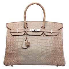 Hermes NEW Birkin 30 Gris Himalayan Crocodile Exotic Top Handle Tote Bag in Box