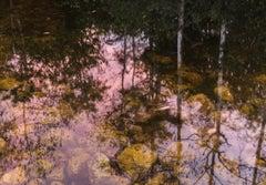 Mirrored Worlds, Big Cypress Swamp, Florida