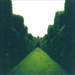 Misderden Park, England (7-00-1c-5-c)