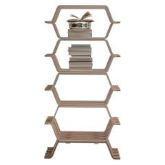 Molteni&C MHC.2 Bookcase with 4 Shelves in American Walnut by Yasuhito Itoh