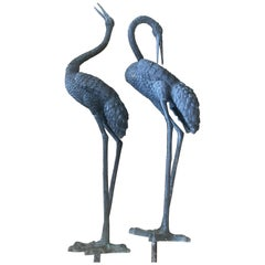 Monumental Pair of Bronze Cranes in Standing Position, Great Color and Patina