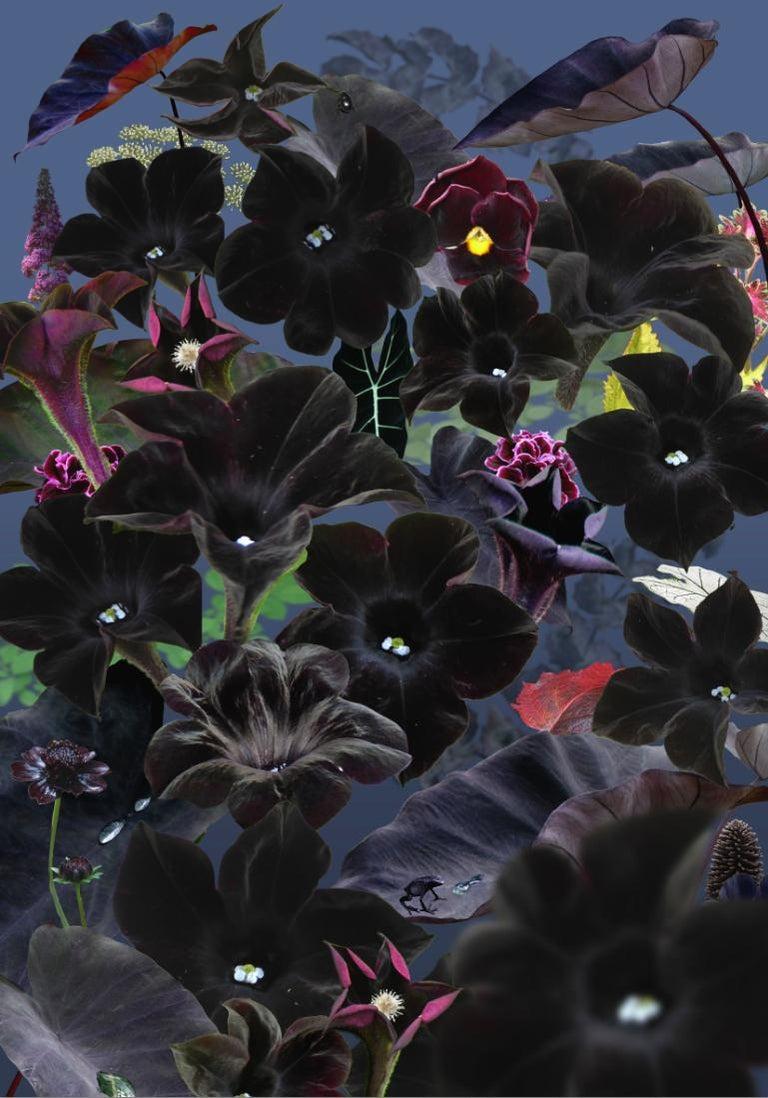 Ruud van Empel Color Photograph - Floresta Negra #1