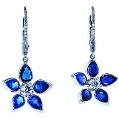 Sapphire and Diamond Earrings, Pierre/Famille