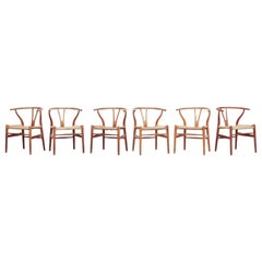 Set of Six Danish Wishbone Chairs CH 24 by Hans J. Wegner for Carl Hansen Oak