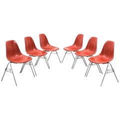 Six Rare Herman Miller Eames Dining Chairs Terracotta, circa 1970
