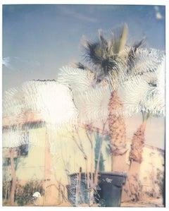 Borrego Springs (California Badlands) - Polaroid, 21st Century, Contemporary