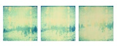 Memories of Green II, triptych, analog, mounted