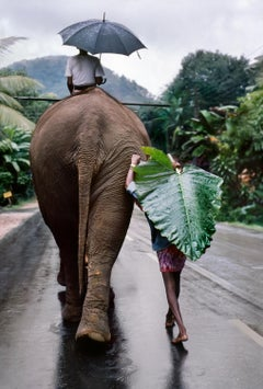 Young Man Walks Behind Elephant, Sri Lanka, 1995