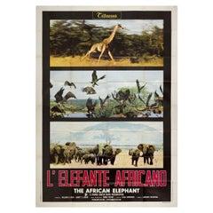 The African Elephant 1972 Italian Quattro Fogli Film Poster