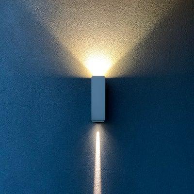 Wildly Illuminating - Tamarama