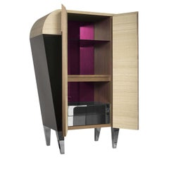 01.03 Collection Pink Bar Cabinet