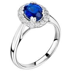 1 Carat Royal Blue Ceylon Sapphire Engagement Ring in a Diamond Halo