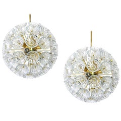 1 of 2 Stunning Floral Glass and Brass Sputnik Chandeliers, Germany, 1960s
