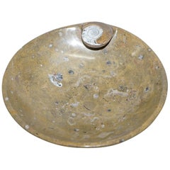 1 of 4 Decorative Moroccan Ammonite Atlas Mountains Fossil Bowls Marble Finish