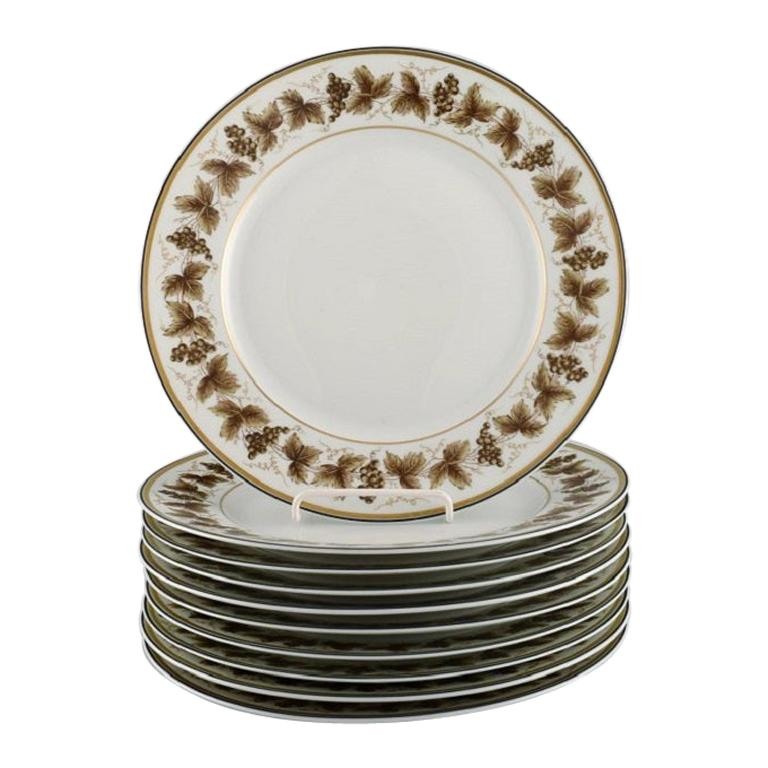 10 Limoges Porcelain Dinner Plates with Hand-Painted Grapevines