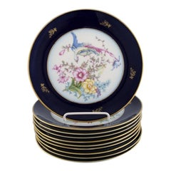 10 Rosenthal Porcelain Plates with Hand-Painted Flowers and Birds