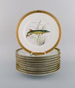 10 Royal Copenhagen porcelain fish plates with hand-painted fish motifs.