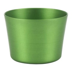 100% Recycled Anodized Aluminum Tumbler in Green, Small