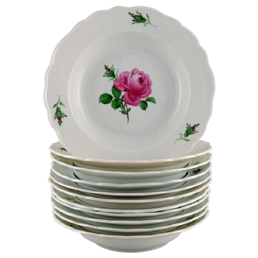 11 Antique Meissen Soup Plates in Hand Painted Porcelain with Pink Roses