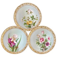 11 Dinner Plates Flowers and Gold, Minton Porcelain, 1874-1884